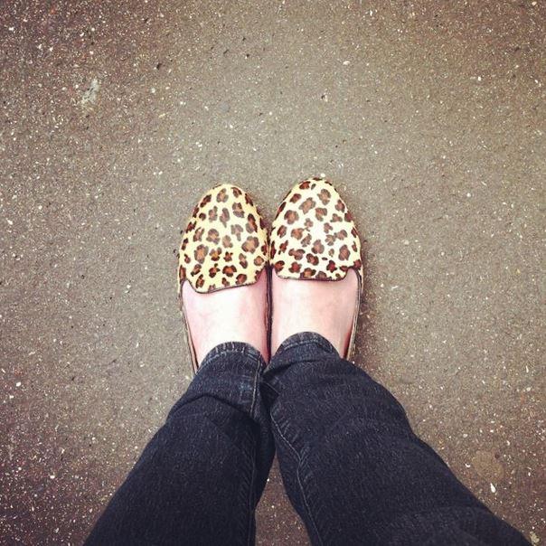 slippers leopard graou