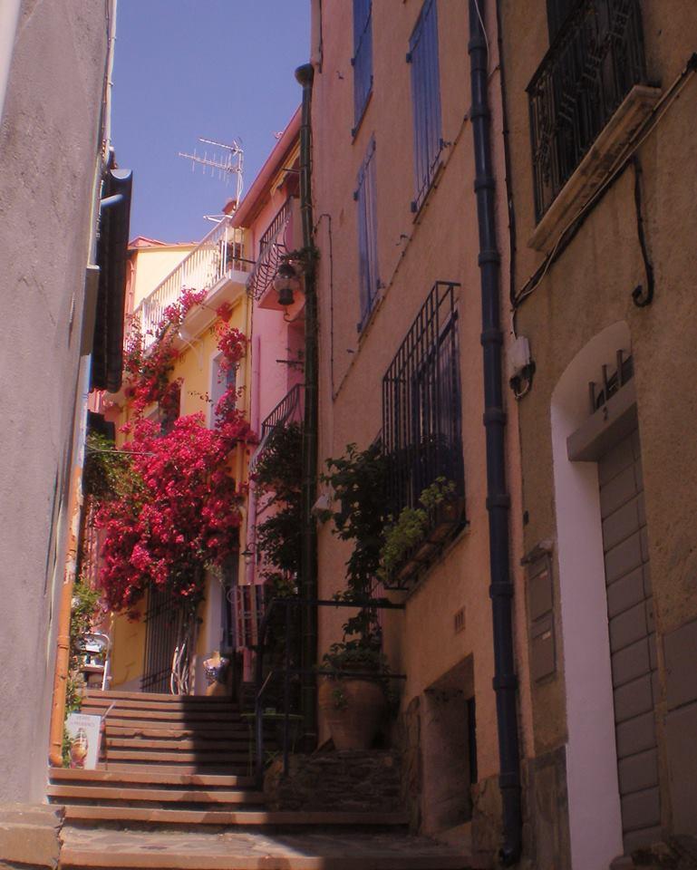 petite rue collioure