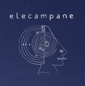 elecampane-high-hopes