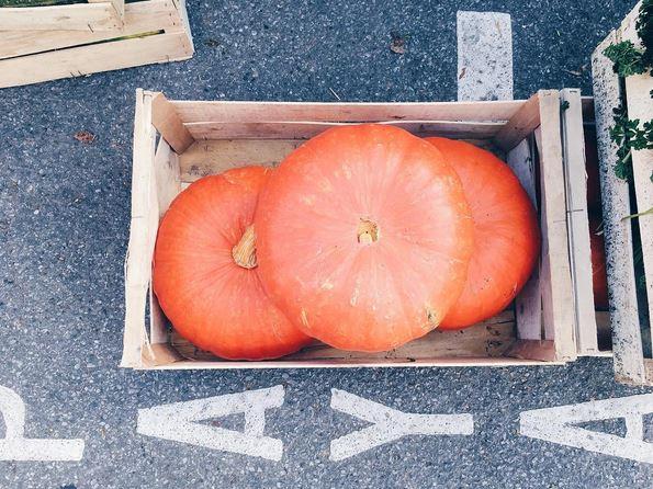 pumpkin-halloween-caen
