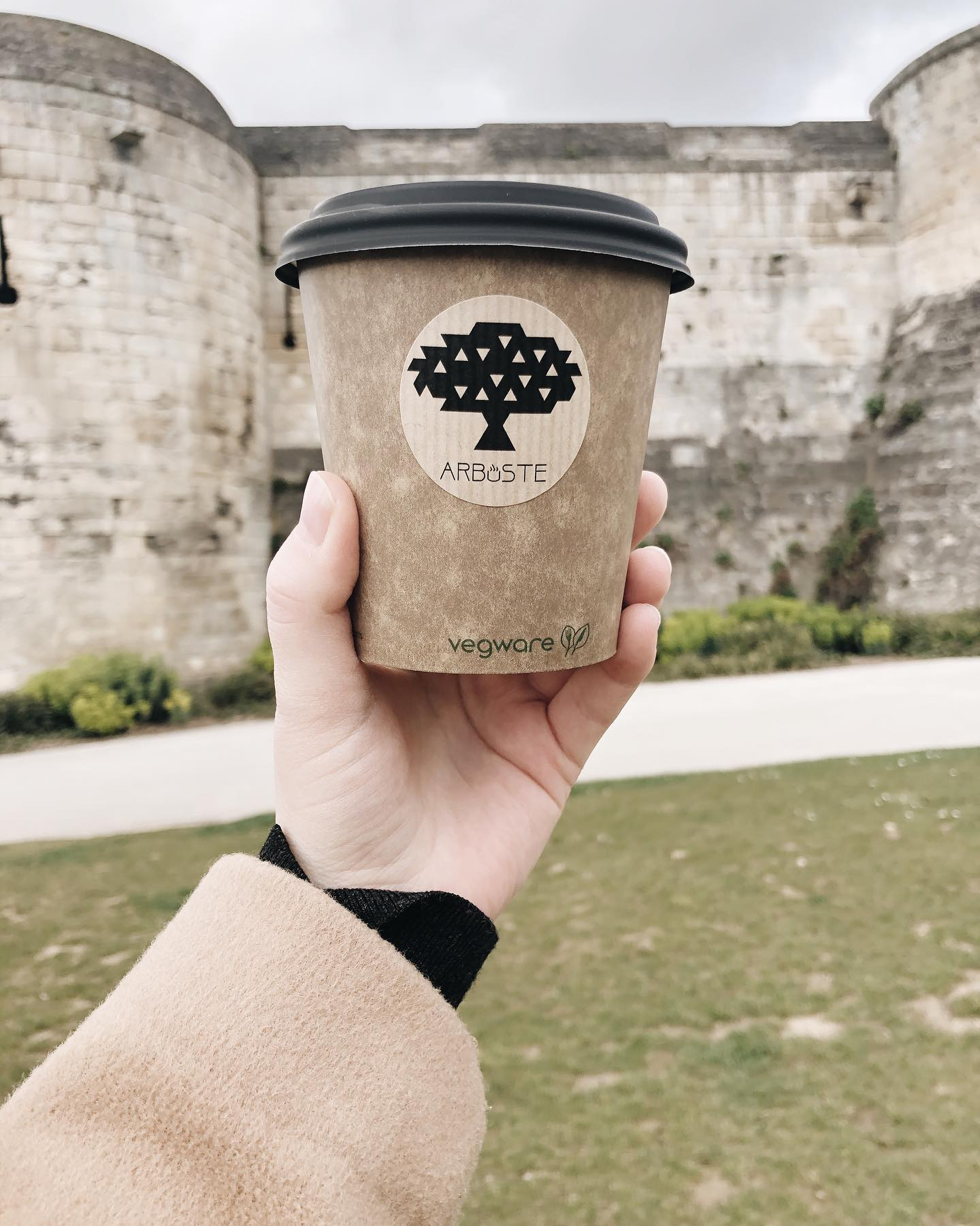 cafe latte arbuste caen